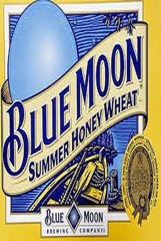 Blue Moon Seasonals - 12 Pack