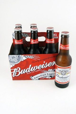 Budweiser - 6 pack