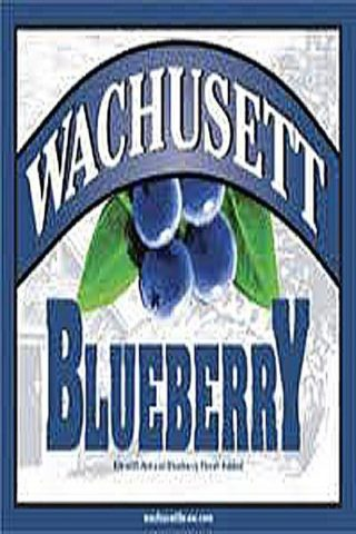 Wachusett Blueberry Ale - 12 pack