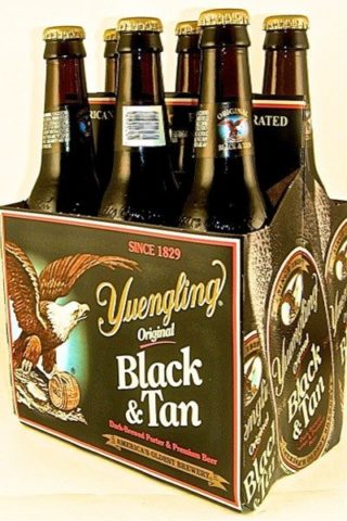 Yuengling Black & Tan - 6 pack