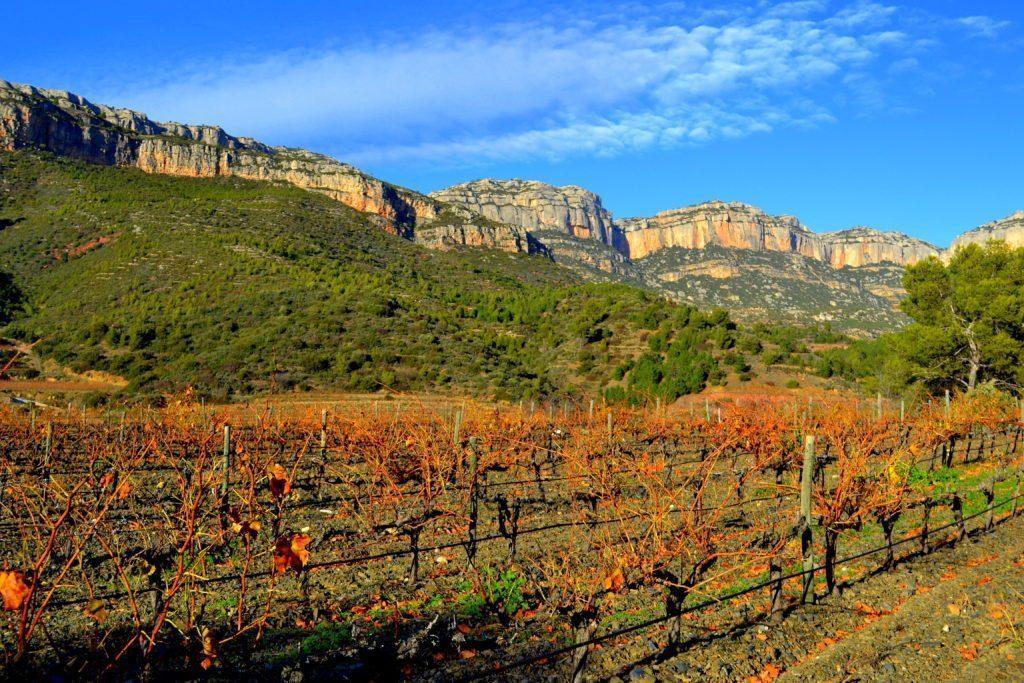 Spanish Wines: Serra del Montsant